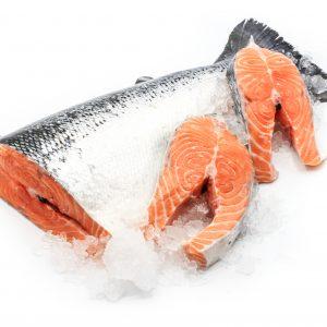Salmon 8